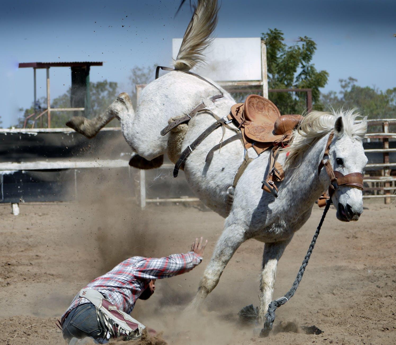 chute de cheval